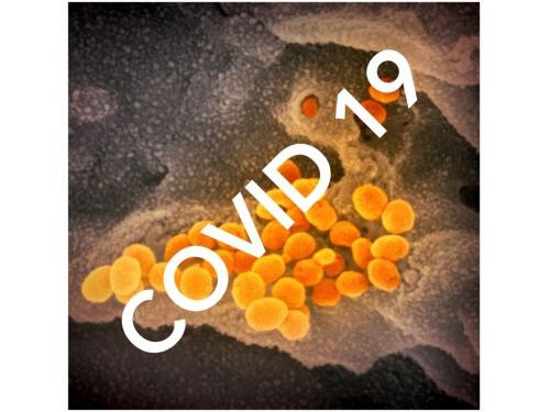 Covid 19 - year 2020